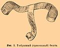 Brockhaus and Efron Encyclopedic Dictionary b20 481-2.jpg