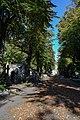 Brompton Cemetery - 3.jpg