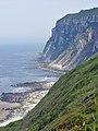 Buckton Cliffs from Speeton Gap - geograph.org.uk - 835212.jpg