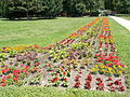 Budapest City Park. Flowerbed.JPG