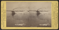 Buffalo harbor. (Boat and ice in water.), from Robert N. Dennis collection of stereoscopic views.png