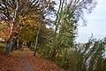 CHOSZCZNO - panoramio (258).jpg