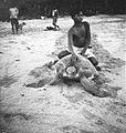 COLLECTIE TROPENMUSEUM Een zeeschildpad op het strand Nederlands-Indië TMnr 60026947.jpg