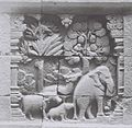 COLLECTIE TROPENMUSEUM Reliëf Ruru-jataka 2, Borobudur TMnr 60042625.jpg