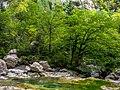 Cañón de Añisclo - Río Bellós 12.jpg