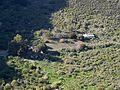Caldera de Bandama - Kratergrund.jpg
