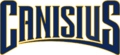 Canisius Athletics wordmark.png