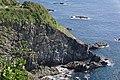 Cape Ashizuri - 足摺岬 - panoramio (2).jpg