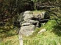 Carn Cornel Site, Hirfynydd - geograph.org.uk - 975842.jpg