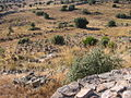 Castro de Las Cogotas - campo de piedras hincadas.JPG