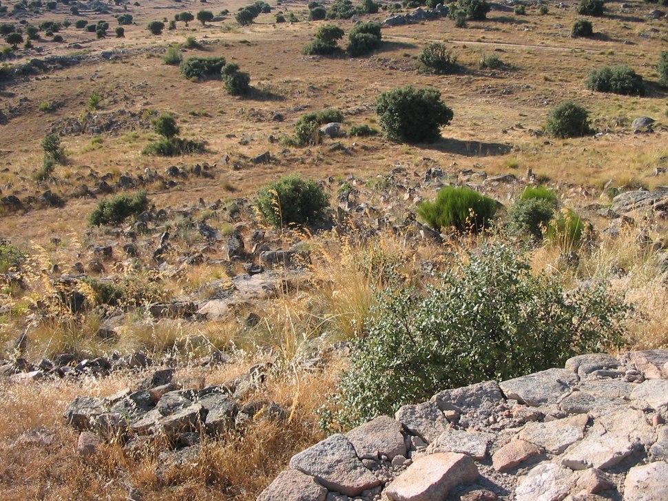 Castro de Las Cogotas - campo de piedras hincadas