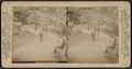 Central Park, New York, from Robert N. Dennis collection of stereoscopic views 4.png