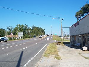 U.S. Route 29 in Florida - US 29 just before crossing the Florida–Alabama state line