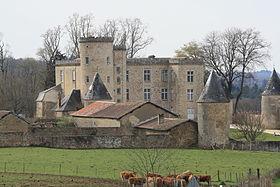 Château de Crosmières à Cussac -87-.JPG