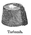 Chambers 1908 Tarboosh.png