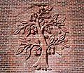 Cherrydale tree (5884220519).jpg