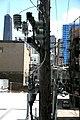 "Chicago (ILL) River North, "" Electric pole "" 1 (4826295034).jpg"