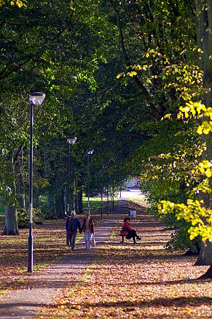 Chippenham Mead - Image: Chippenham in Autumn