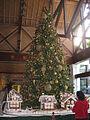 Christmas Tree in Orlando Hotel.JPG
