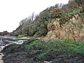 Cliff and foreshore approaching West Charleton Marsh - geograph.org.uk - 309519.jpg