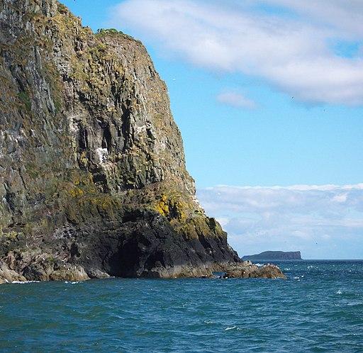 Cliffs, The Gobbins - geograph.org.uk - 1901144