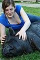 Cochon nain vietnamien du Refuge GroinGroin en train de se faire caresser - Photo de L214 - Éthique & animaux.jpg