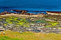 Colourful Mullaghmore coast - geograph.org.uk - 1152320.jpg