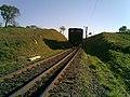 Comboio que passava sentido Boa Vista em viaduto na Variante Boa Vista-Guaianã km 199 em Itu - panoramio - zardeto (1).jpg