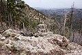 Continental Divide Trail - Flickr - aspidoscelis (49).jpg
