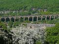 Copley Viaduct 2 (4633174030).jpg
