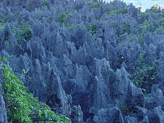 Niue - Coral chasm in Niue