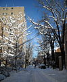 Corcoran Street, N.W. - Blizzard of 2010.JPG