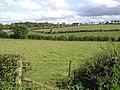 Cornamucklagh Townland - geograph.org.uk - 1457954.jpg