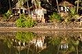 Cottage Stream Dwarka Cola Goa Jan19 DSC06042.jpg