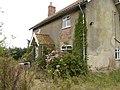 Cottage garden - geograph.org.uk - 1020617.jpg