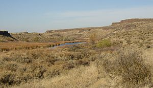 Crab Creek - Crab Creek in the Drumheller Channels.