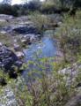Creek near Lake Isabella (19098879771).png