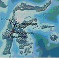 Crunomys group Sulawesi.jpg