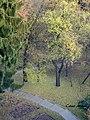 Culori de toamna - panoramio.jpg