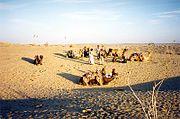 The Thar desert near Jaisalmer.