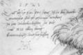 Dürer Walrosskopf Text.PNG