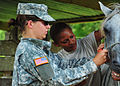 Defense.gov News Photo 100822-N-1531D-100 - U.S. Army Capt. Rebecca Carden left calms a horse as Pfc. Angela McCormick prepares to give it a vaccination during a veterinary visit to a farm in.jpg