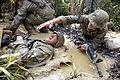 Defense.gov photo essay 110429-M-VG363-0934.jpg