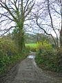 Denbury Down Lane - geograph.org.uk - 1615936.jpg