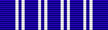 Department of Energy - Award for Valor ribbon