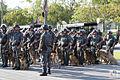 Desfile de 7 de Setembro de 2014 (11).jpg