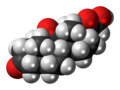 Dihydrocortisone 3D spacefill.png