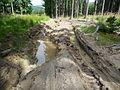 Dirt road, Ondřejovsko (2).jpg