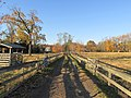 Dirt road from Codman Farms to the Codman Estate, Lincoln MA.jpg