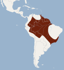 Distribution of Sturnira tildae.png